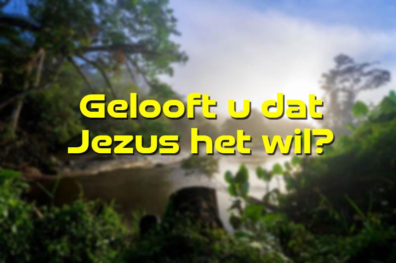 Gelooft u dat Jezus het wil?