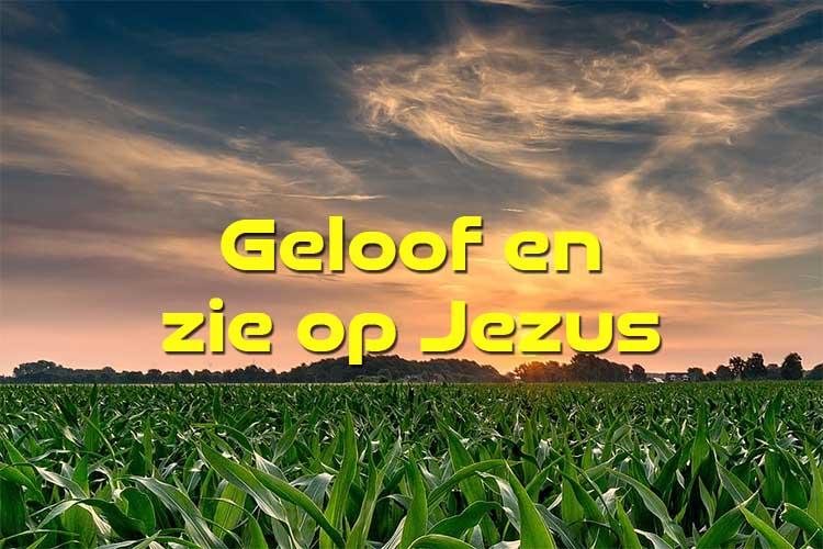 Geloof en zie op Jezus