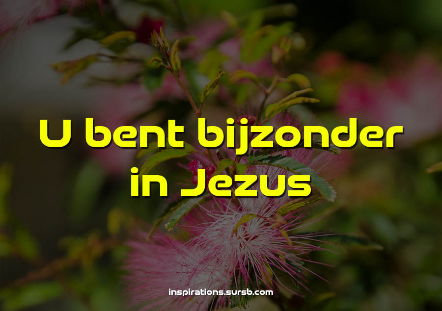 U bent bijzonder in Jezus